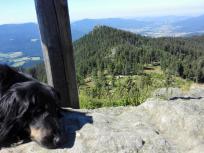 Doxi am Gipfelkreuz des Großen Osser, im Hintergrund der Kleine Osser