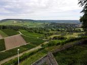 Blick von der Burg in die umliegenden Weinberge