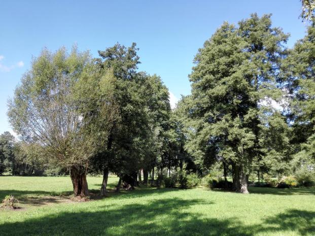 Überall zwischen den Gehöften Felder, Wiesen und Wald