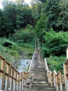 Hier geht es steil nach oben auf die Elbhöhen