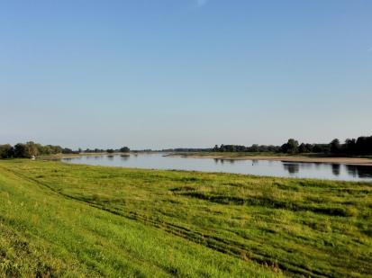 Weit und breit nur Elbe