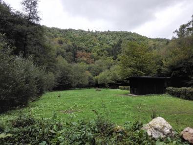 Verwaistes Pfadfinderlager im Talgrund des Brexbachs