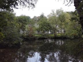 Teich am Haus Wildenrath