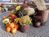 Herbstdekoration im Innenhof