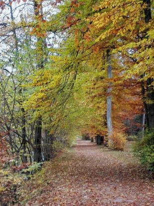 Wege im Schlosspark