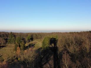 Blick vom Aussichtsturm Richtung Osten in die Rheinische Tiefebene