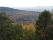 Blick unterhalb der Teufelskanzel Richtung des Krufter Waldsees