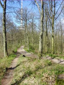 Auf dem Hermannsweg bei Bielefeld
