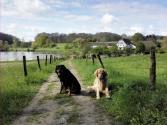 Bellis und Doxi vor dem malerisch im Bachtal gelegenen Gut Papendelle