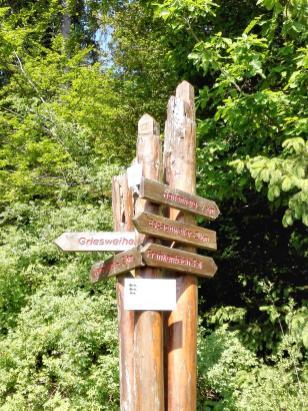 Hinweisschilder im Wald. Überall Weiher hier.