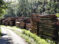 Die ersten Holzstapel tauchen auf