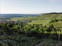 Abendwanderung rund um Löwenstein