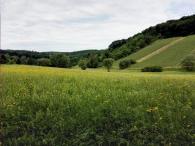 Felder und Weinberge am Fuße des Bergkamms