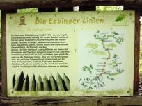Infotafel zum Verlauf der Eppinger Linien