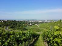 Blick hinunter in den Talkessel von Heilbronn