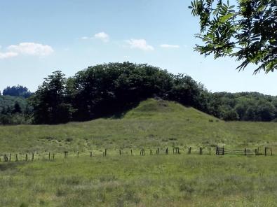 """Ein Hügelgrab oberhalb der Waldgaststätte """"Kleines Herbsthäuschen"""""""
