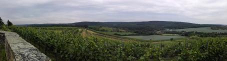 Panoramablick über die Weinberge