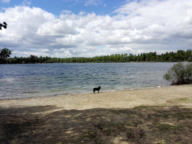 Doxi am Ufer des Biesdorfer Sees