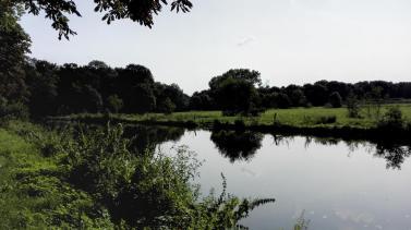 Schöne Natur am Kanal