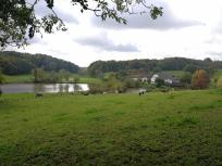 Der Bauernhof im Rotthäuser Bachtal