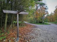 Wegkreuz im Wald