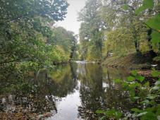 Vom Haus Horst zum Schloss Rheydt