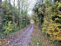 Rurradweg bei Broich