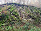 Gesteinsaufschluss am Strödter Hügel