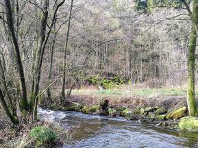 Im Hintergrund überquert der Westwall den Grölisbach