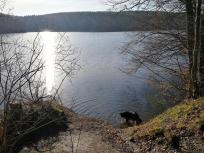 Doxi prüft die Wasserqualität der Steinbachtalsperre