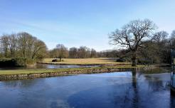 Blick in den Englischen Landschaftsgarten auf der Rückseite des Schlosses