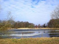 Zugefrorener See neben der Burg