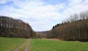 Blick zurück ins Tal des Hetttenbachs