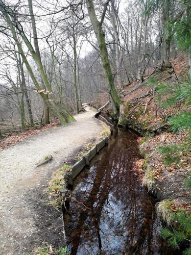 Bachlauf gleich neben dem Wanderweg
