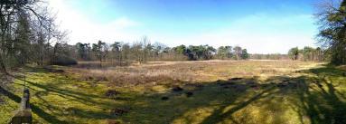 Panoramabild aus dem Revevennen