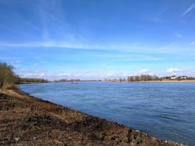 Am Rhein bei Xanten