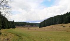 Am Oberlauf des Krockesbachs