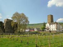 Die Brömserburg (links) und die Boosenburg mit der Villa der Weinkellerei Carl Jung (rechts)