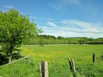 Feldflächen zwischen Wald und Möhne