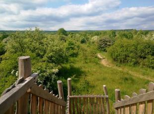 Blick vom Aussichtspunkt über die Freiflächen