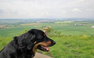 Blick vom Gipfel nach Warburg