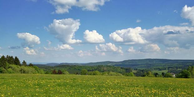 Landschaft bei Neuastenberg