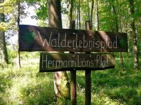 Wie erreichen den hübsch gestalteten Walderlebnispfad