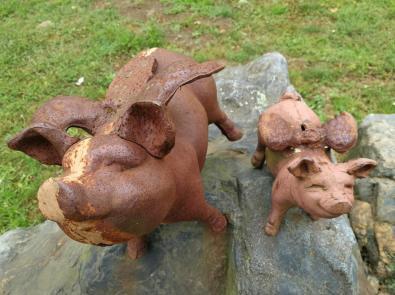 Glückschweinchen am Ortsausgang von Sint Odilienberg