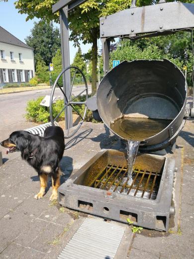 Brunnen am Marktplatz von Iselburg