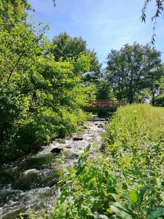 Verbindung zwischen den Seen des Ems-Altarms an der früheren Versener Mühle