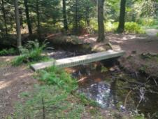 Einige der wenigen Stellen, an der ein Steg den Fluß kreuzt