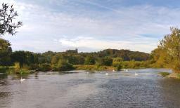 Schöne Landschaft an der Ruhr mit der Burg Blankenstein im Hintergrund