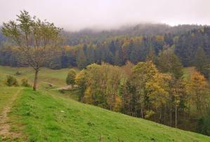Zwischen Spätsommer und Herbst