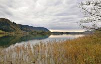 Naturromantik am See
